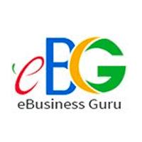 eBusiness Guru eCommerce Full Service Agency